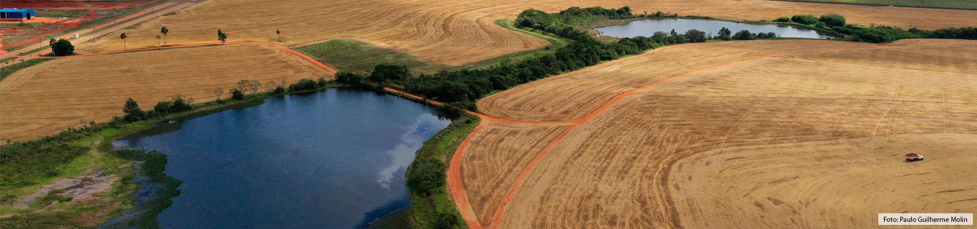 Imagem aérea onde visualiza-se 2 açudes e parte das plantações de trigo, as quais estão em processo de colheita