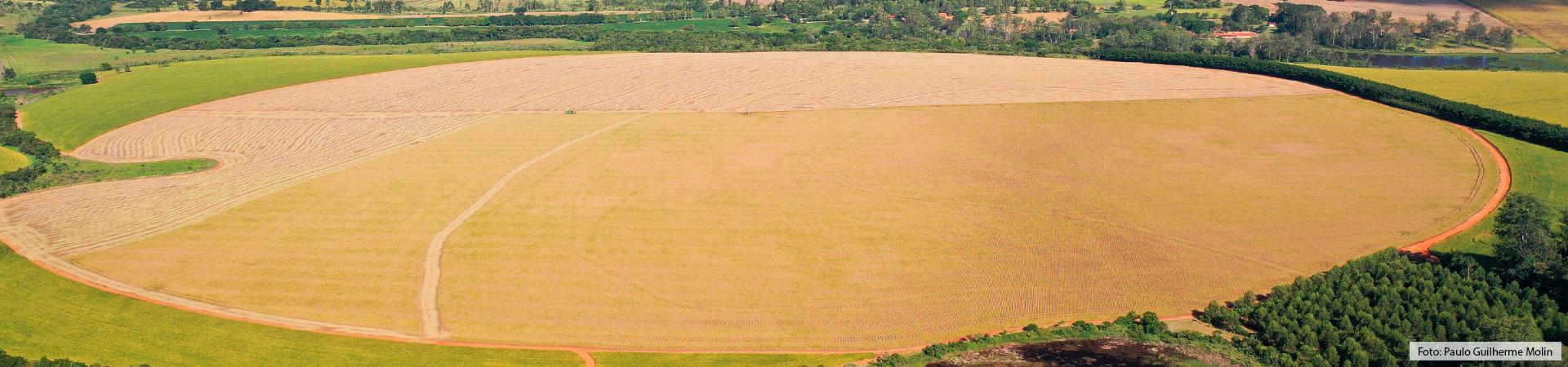 Pivô central da FELS durante a colheita de trigo